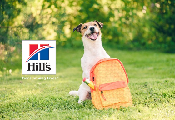 My pet with its back-to-school accessory