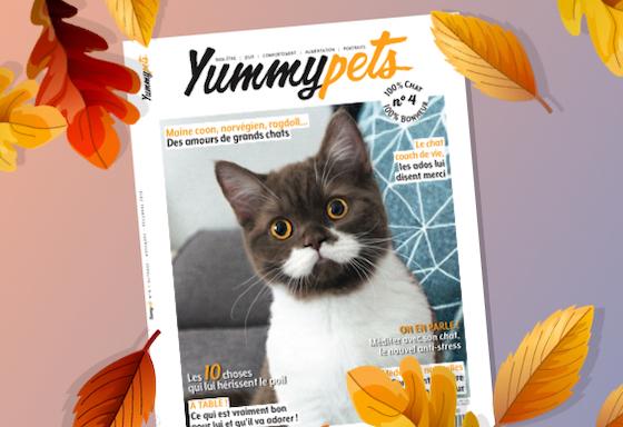 Prenez votre animal en photo avec le magazine YUMMYPETS #4