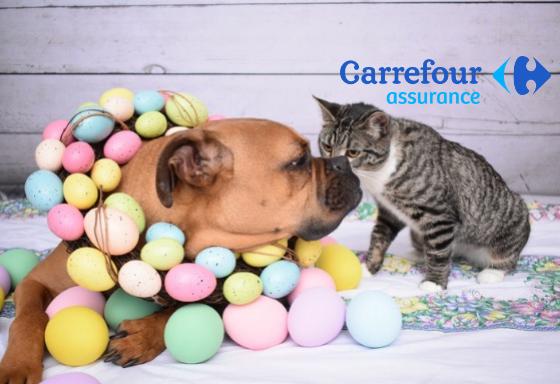 Mi animal celebra Pascua
